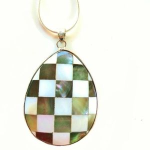 Multicolor Abalone and Of Pearl Pendant w/Chain